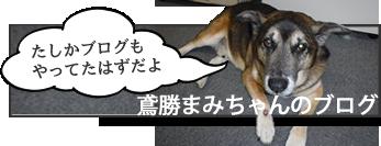 鳶勝まみちゃんのブログ